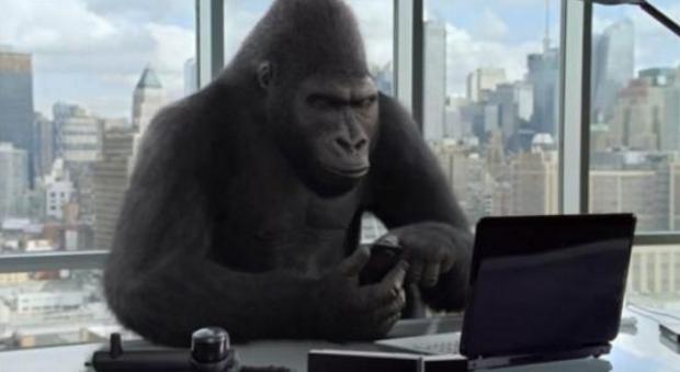 用历史数据仿真交易-论把大猩猩训练成交易员的可能性